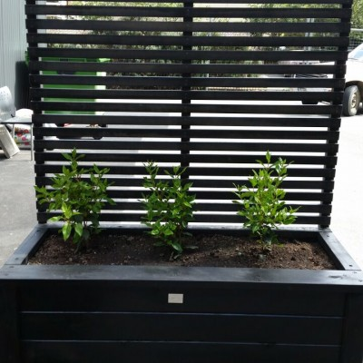 Planter Box With Trellis Screen Christchurch